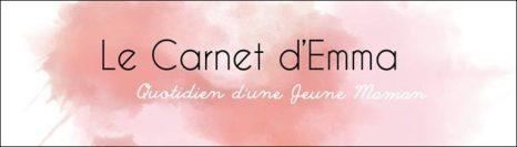 le-carnet-d-emme-768x219